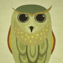 Owl illustration · Koimakoi · Serena Perrotta · Diseño gráfico, diseño web y fotografía